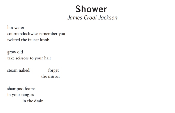 Shower by James Croal Jackson